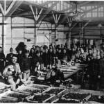 Militairen verzamelen zich in de groenteveiling van Naaldwijk